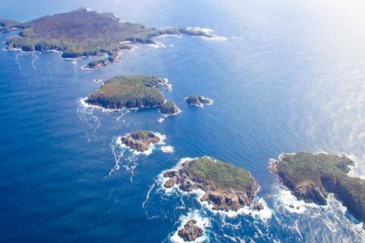 Île Stewart
