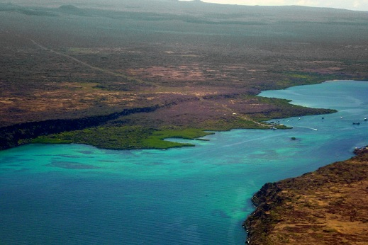 Ile Baltra - Galapagos