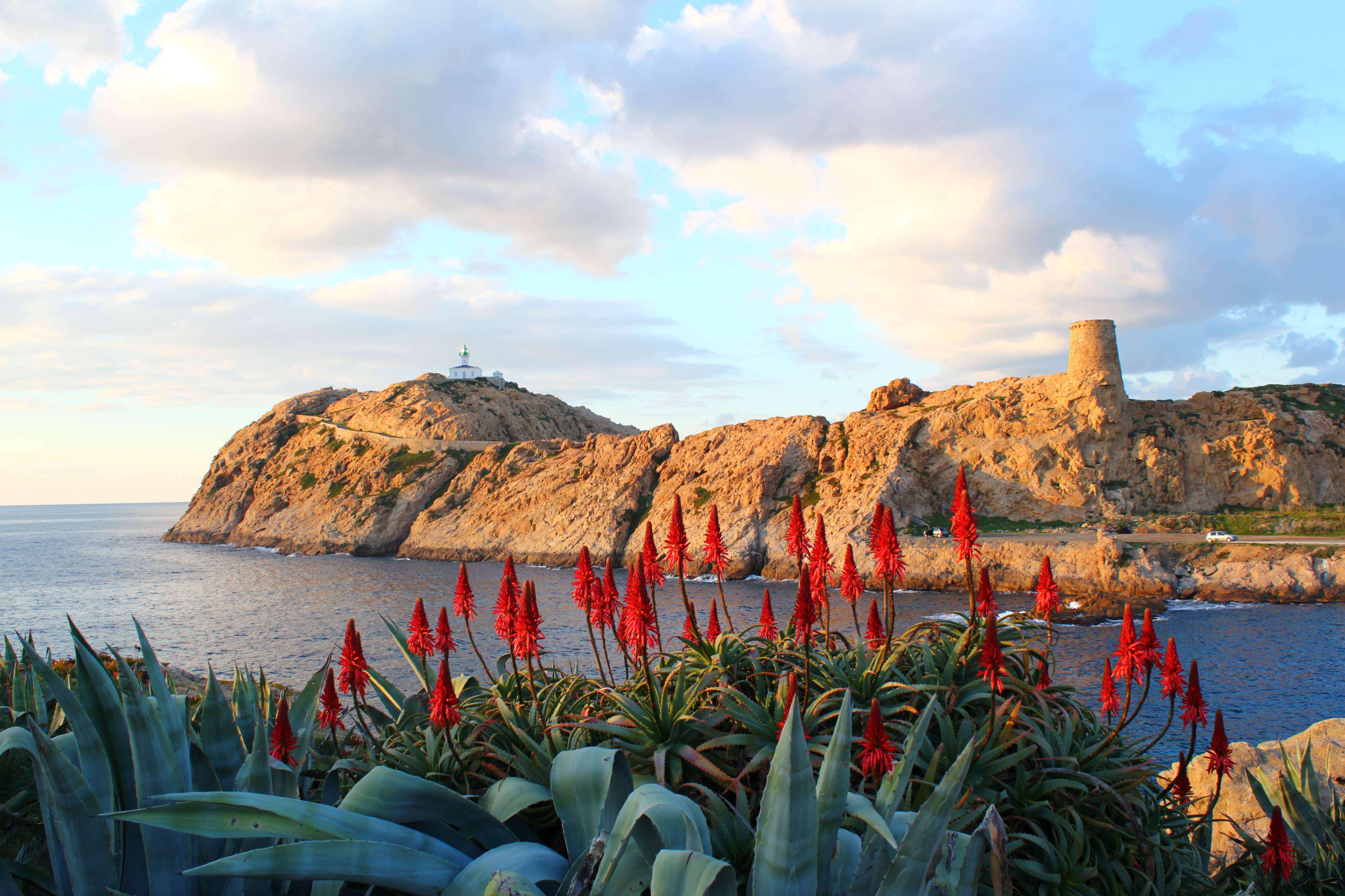 Ile Rousse - Corse