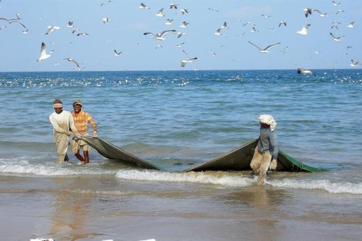 Mer d'Arabie et Golfe d'Oman